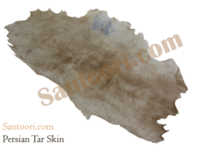 Persian Tar Skin for Sale | Iranian Tar Skin for Sale | Puste Tar for sale